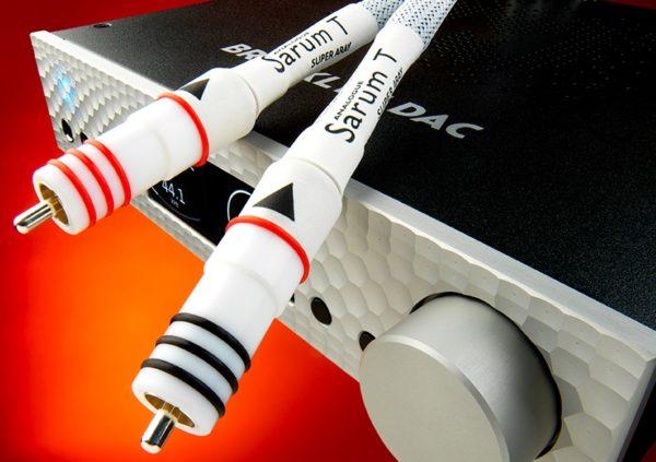 Это фото кабеля Sarum T Analogue RCA